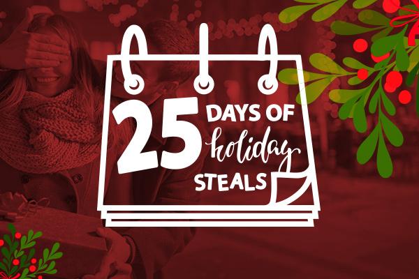 EntADS-HolidayLandingPage2017(600x400)25dayssale